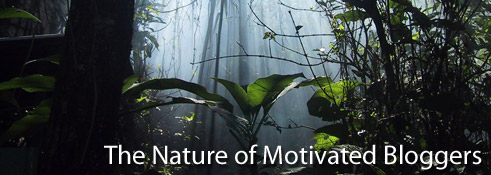 The Nature of Motivated Bloggers