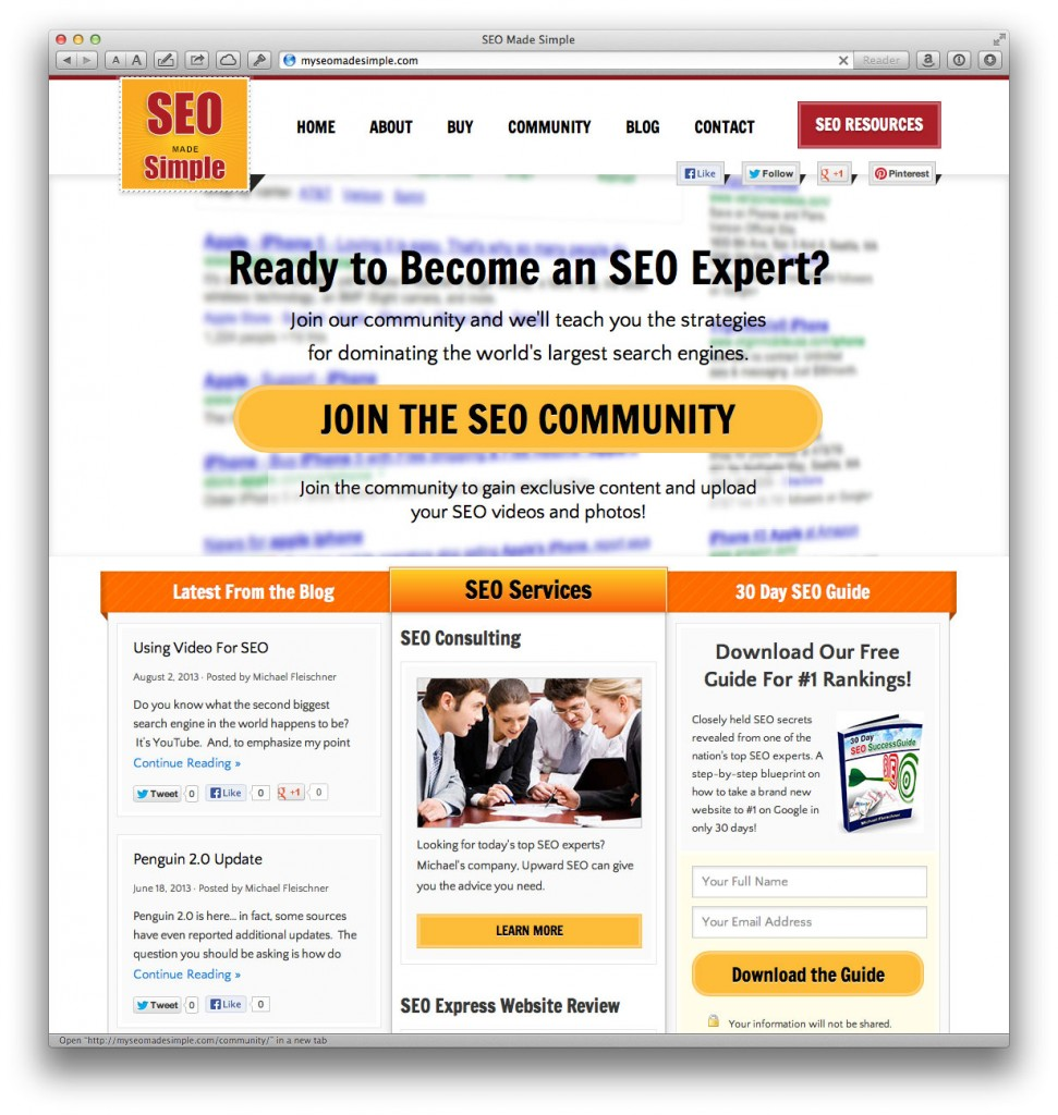 SEO Made Simple Website by Unique Blog Designs